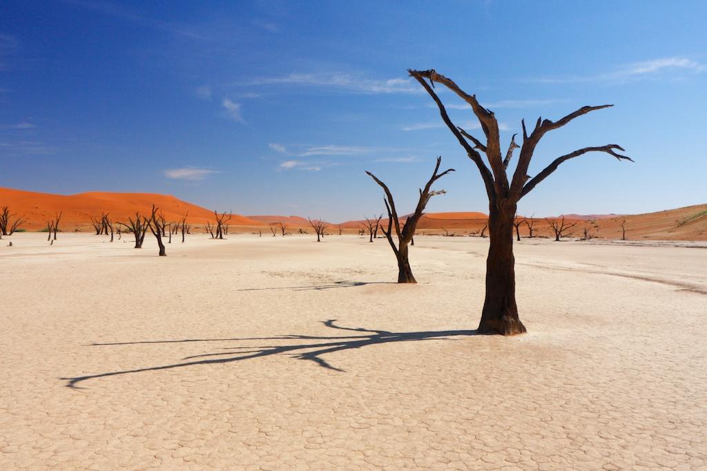 Namibië en Botswana
